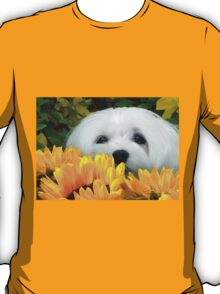 Snowdrop the Maltese - I Spy with my little Eye ! T-Shirt