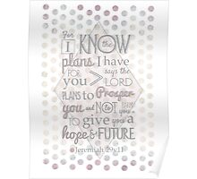 Quirky Modern Bible Verse, Jeremiah 29 verse 11 'For I know the plans I have for you says the lord. Plans to prosper you and not to harm you. To give you a hope and a future' Patterned, Scripture art. Poster