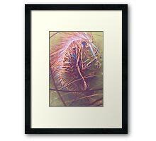 Dissociation Framed Print