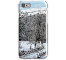 Walking In A Winter Wonderland iPhone Case/Skin