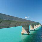 bridges of florida by ELENA TARASSOVA