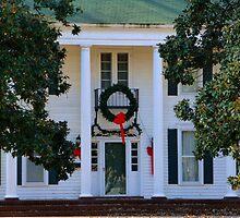 My Neighbors House At Christmas by WildestArt
