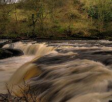 Aysgarth Falls by Andy Harris