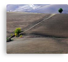 Valley south of Pienza, Tuscany,Italy Canvas Print