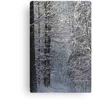 Snowy Hike Trail  Metal Print