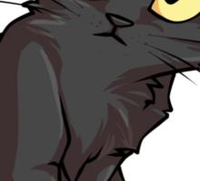 Sketch the Black Cat Sticker