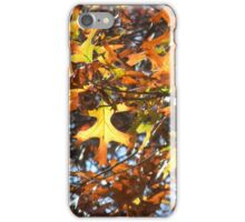 Star of the Show - Best Viewed Larger iPhone Case/Skin