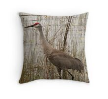 Florida Sandhill Crane  Throw Pillow