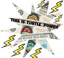 Turtle Power by OldDogJonDon
