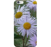 Colorado Wildflower iPhone Case/Skin