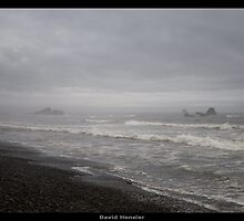 Ruby Beach V by Hensler