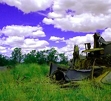 Fantasy, Rural NSW, Australia by Philip Johnson