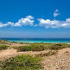 West Coast Aruba by Henry Beeker