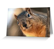 Where were you yesterday? Greeting Card