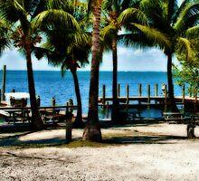 Gulf View by Roland Pozo