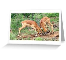 ENCOUNTER FOR DOMINANCE Greeting Card