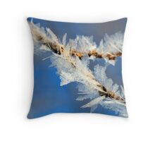 Ice Crystals on weeds Throw Pillow