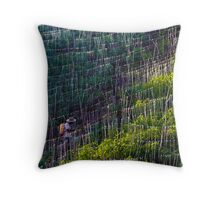 Farmer tends yucca plantation in Colombia Throw Pillow