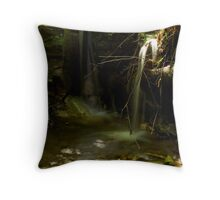 Stream in Colombia Throw Pillow