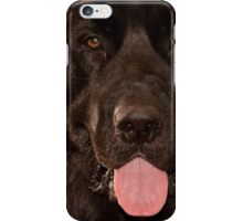 Ruh Roh iPhone Case/Skin