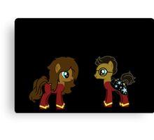 Harry and Hermionie Ponies. Canvas Print