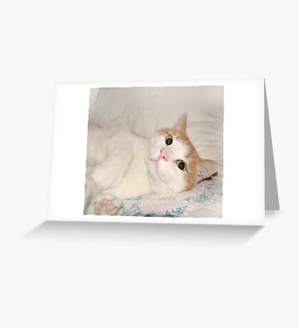 """Jimmy"" Greeting Card"