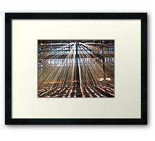 Barnyard Close Encounter  (2)! Framed Print