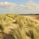 Sand Dunes by CinB