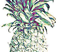 Pineapple by Camille Lafrenière