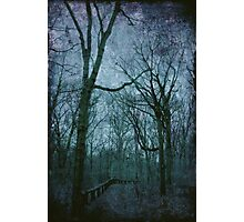 The Blue Path Photographic Print