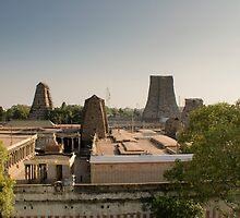 Sri Meenakshi Temple by Brent Olson