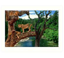 NA760-Amazing Tree Climbers Art Print