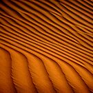 Dune Pattern by Scott Harding