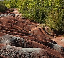 Mars on Earth - Cheltenham Badlands, Ontario, Canada by Georgia Mizuleva