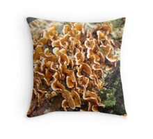 Turkey Tails Throw Pillow