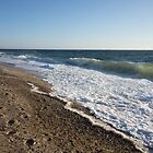 Herring Cove Beach by Anne Scantlebury