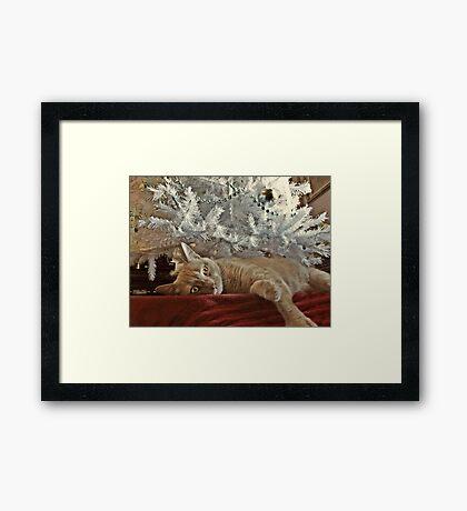 Tired of Waiting For Santa Framed Print