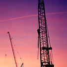 Cranes by bouche