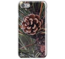 Pine Cone Karma iPhone Case/Skin