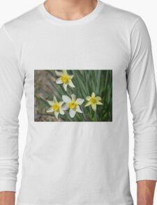 Daffodils Long Sleeve T-Shirt