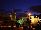 Tower of david at night by Moshe Cohen