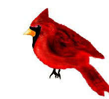 Cardinal by Penny Ward Marcus