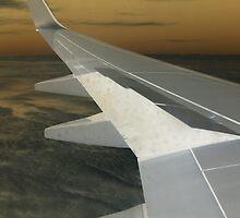 Wing 4 by Elizabeth Wood