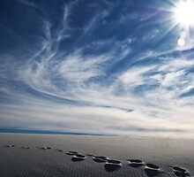 White Sands by NandM