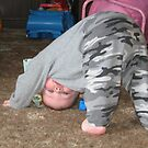 Look Ma I'm Upside Down by Tina Miller