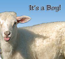 It's a Boy by Bonnie T.  Barry