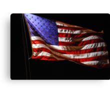 Red, White, Blue, and Black Canvas Print