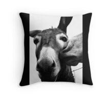 Donkey kisses Throw Pillow