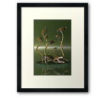 Turtle Haven Framed Print