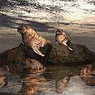 Sunset Song by Lisa  Weber